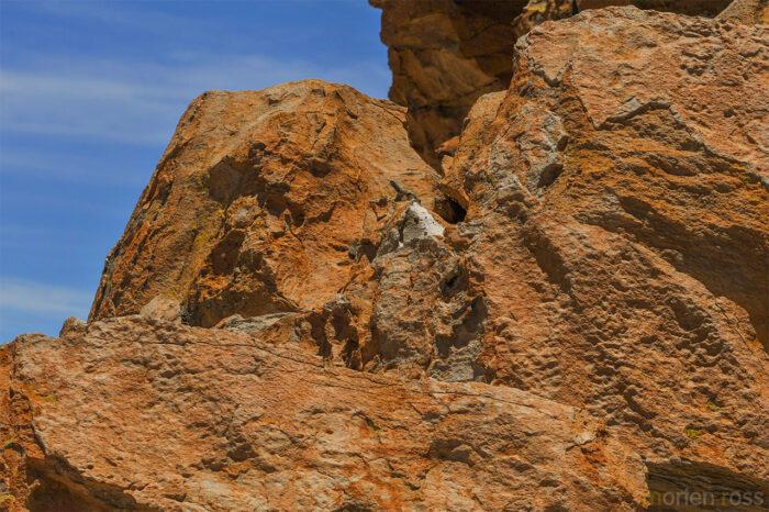 Rock Valley (Valle de las Rocas) & Southern viscacha (Lagidium viscacia)